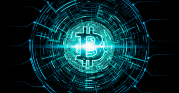 Bitcoin Whales – Everything You Need to Know